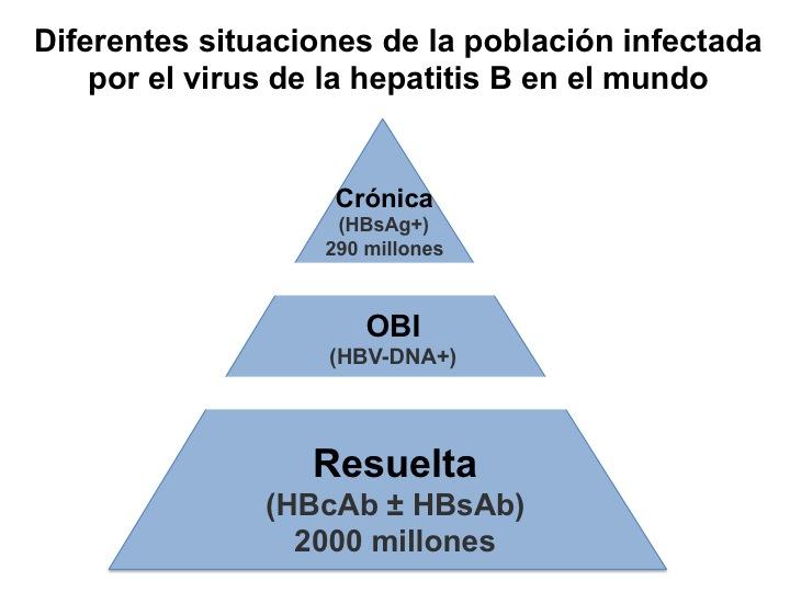 Diferentes situaciones de la población infectada por la hepatitis B